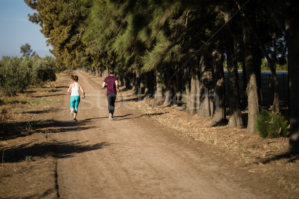 Rear view of young couple running on dirt road Stock photo © wavebreak_media