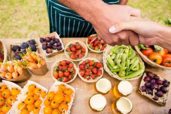 Cropped image of woman shaking hand with man selling fruits Stock photo © wavebreak_media