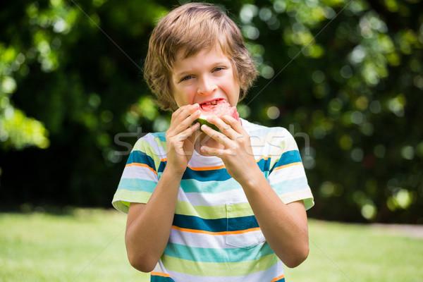 Wenig Junge Essen Wassermelone Garten Blumen Stock foto © wavebreak_media