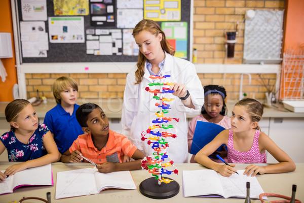 öğretmen ders Öğrenciler okul kadın kız Stok fotoğraf © wavebreak_media