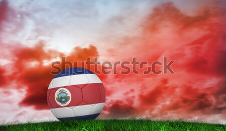 Football in costa rica colours against close-up of grass mat Stock photo © wavebreak_media