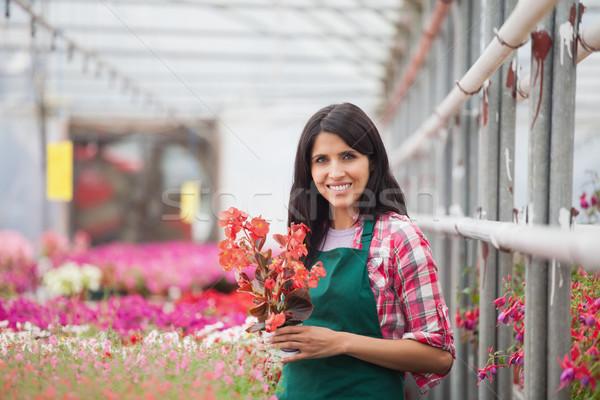 женщину цветок рабочих улыбаясь теплица Сток-фото © wavebreak_media