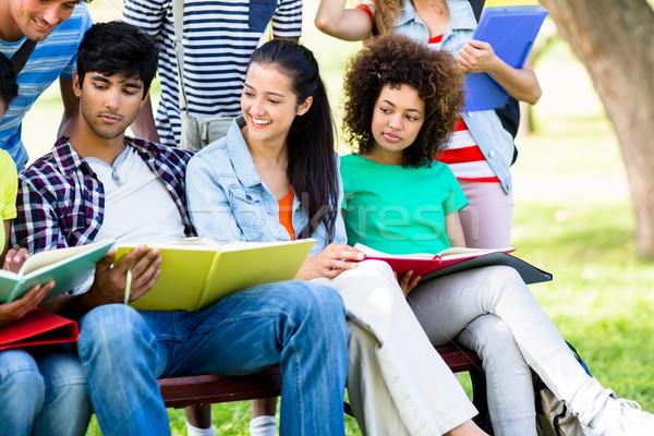 Egyetem diákok tanul pad fiatal főiskola Stock fotó © wavebreak_media