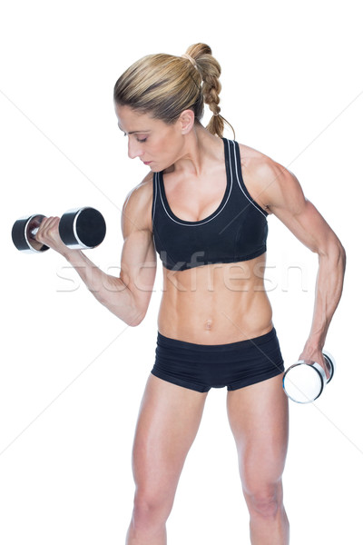 Female bodybuilder working out with large dumbbells Stock photo © wavebreak_media