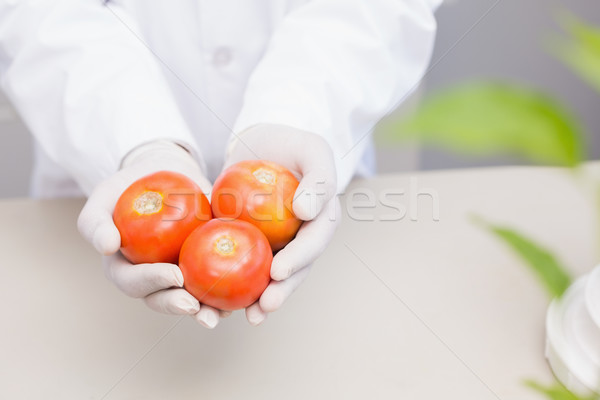Científico guantes tomates laboratorio escuela Foto stock © wavebreak_media