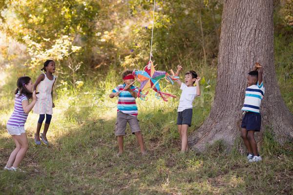 Vrienden juichen geblinddoekt jongen opknoping boom Stockfoto © wavebreak_media