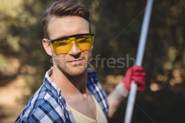 Handsome man wearing eyeglasses while using olive rake at farm Stock photo © wavebreak_media