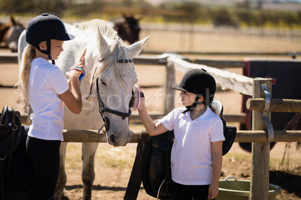 Girls grooming the horse in the ranch Stock photo © wavebreak_media