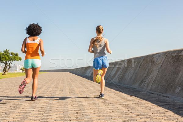 Stockfoto: Achteraanzicht · twee · jonge · vrouwen · jogging · samen · promenade