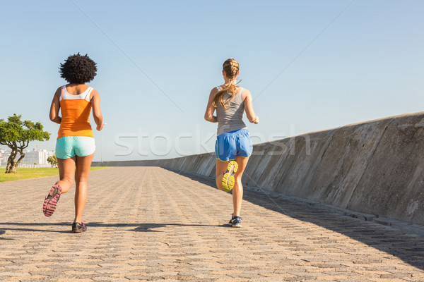 Iki jogging birlikte mesire Stok fotoğraf © wavebreak_media