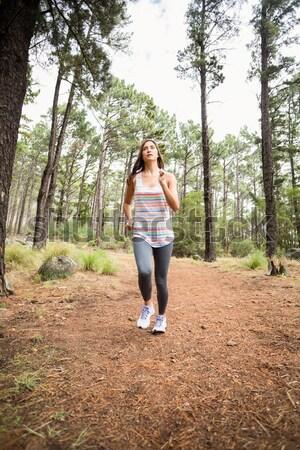 Genç mutlu jogging yapan yürüyüş doğa kadın Stok fotoğraf © wavebreak_media