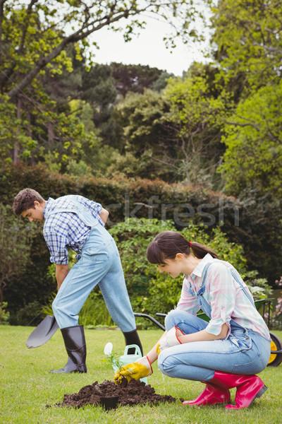 Genç kadın fidan bahçe çim çift Stok fotoğraf © wavebreak_media