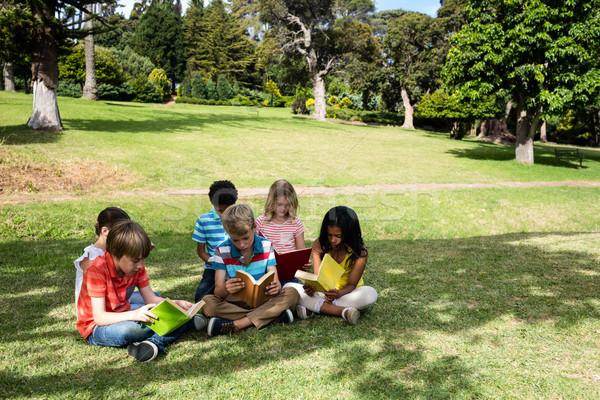 Ninos lectura libro parque nino Foto stock © wavebreak_media