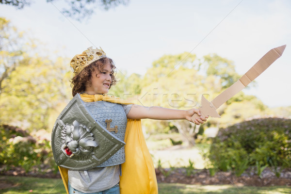 Portrait of a cute boy pretending to be a knight  Stock photo © wavebreak_media