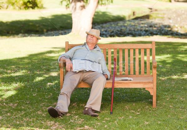 Kıdemli adam uyku bank bahçe yaz Stok fotoğraf © wavebreak_media