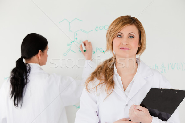 Woman looking at the camera while another one is writting a formula Stock photo © wavebreak_media