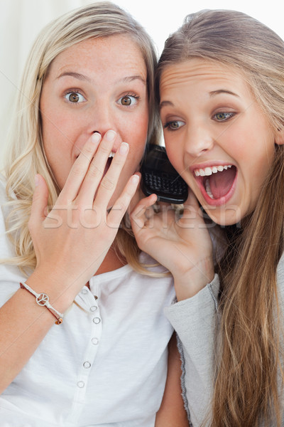 A shocked and happy pair of sisters as they make a phone call and look at the camera Stock photo © wavebreak_media