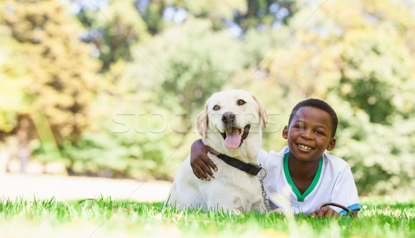Aranyos kicsi fiú labrador kutya napos idő Stock fotó © wavebreak_media