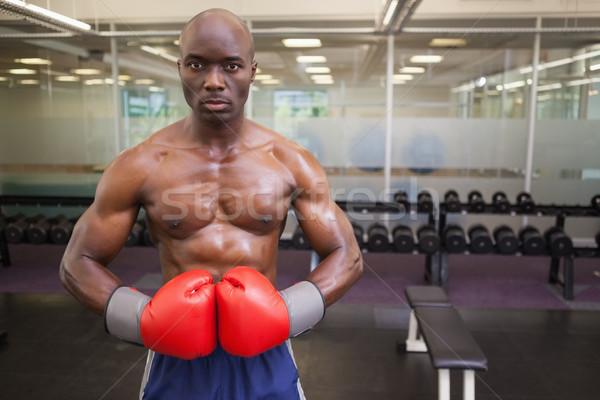 Muscular boxer in health club Stock photo © wavebreak_media