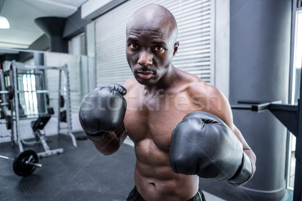 Jungen Bodybuilder posiert Kamera Fitnessstudio Stock foto © wavebreak_media