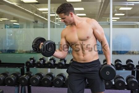 Fiatal testépítő súlyemelés crossfit tornaterem férfi Stock fotó © wavebreak_media