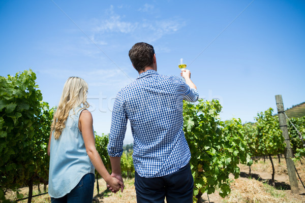 Low angle rear view of couple holding wineglass at vineyard Stock photo © wavebreak_media