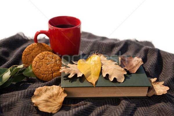 Café noir cookies journal laine couverture Photo stock © wavebreak_media