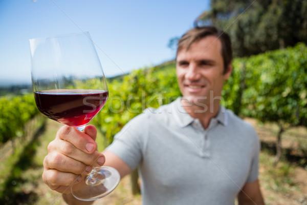 Smiling vintner examining glass of wine Stock photo © wavebreak_media