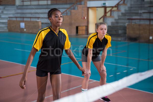 Feminino jogadores jogar voleibol tribunal menina Foto stock © wavebreak_media