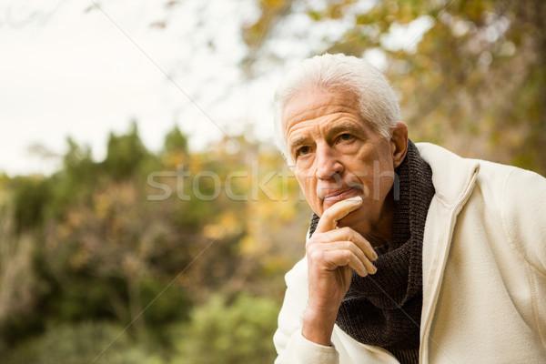 старший человека парка природы зеленый пожилого Сток-фото © wavebreak_media