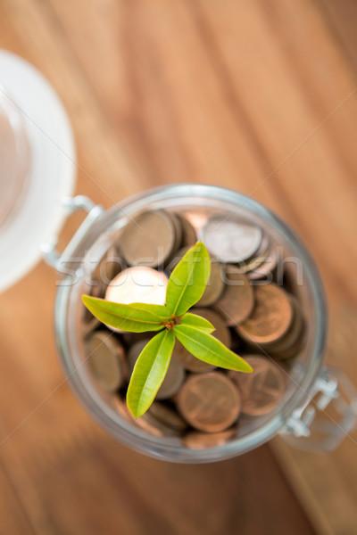 Planta crescente fora moedas jarra tabela Foto stock © wavebreak_media