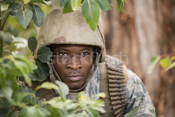 Askeri asker gizleme arkasında ağaçlar et Stok fotoğraf © wavebreak_media