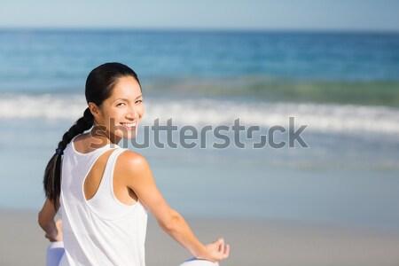 Hamile kadın ayakta plaj okyanus bebek Stok fotoğraf © wavebreak_media
