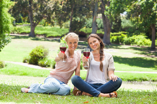 Foto stock: Femenino · amigos · potable · vino · tinto · parque · belleza