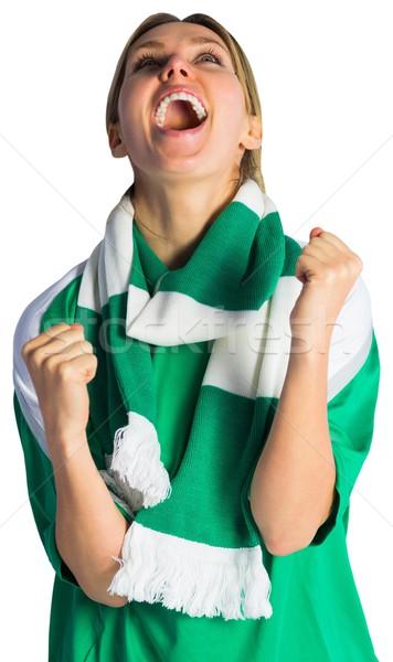Futbol fan yeşil mutlu enerji Stok fotoğraf © wavebreak_media