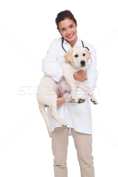 Beautiful veterinarian with a cute dog in her arms Stock photo © wavebreak_media
