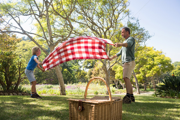 Father and son spreading the picnic blanket Stock photo © wavebreak_media