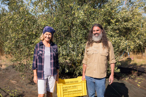 Portrait of happy couple holding crate in olive farm Stock photo © wavebreak_media