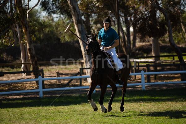 Masculino jóquei equitação cavalo rancho Foto stock © wavebreak_media