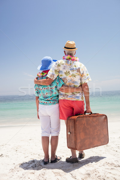 Rear view of senior couple wearing a garland and looking at sea Stock photo © wavebreak_media