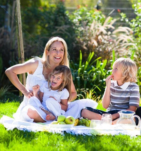 Anya gyerekek piknik park nő égbolt Stock fotó © wavebreak_media