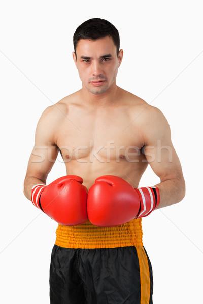 Jóvenes boxeador guantes de boxeo blanco deporte fondo Foto stock © wavebreak_media