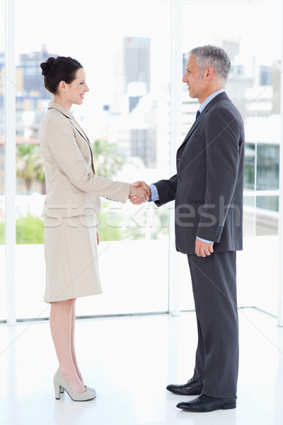 деловые люди рукопожатием улыбаясь глядя другой улыбка Сток-фото © wavebreak_media
