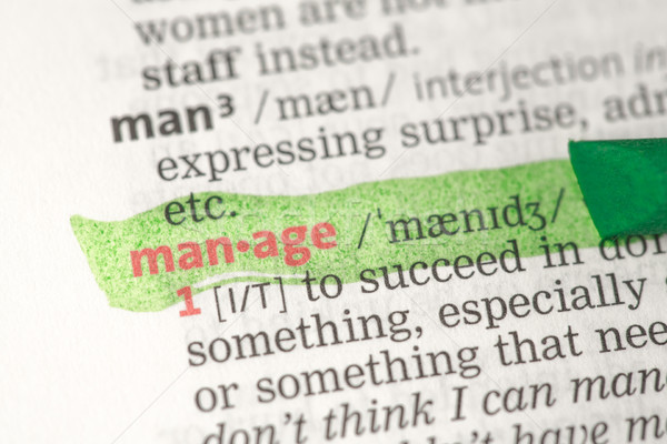 Manage definition highlighted in green Stock photo © wavebreak_media