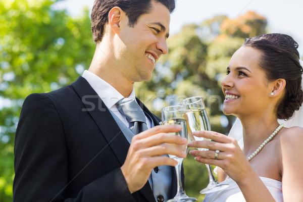 Newlywed champagne fluiten park gelukkig Stockfoto © wavebreak_media