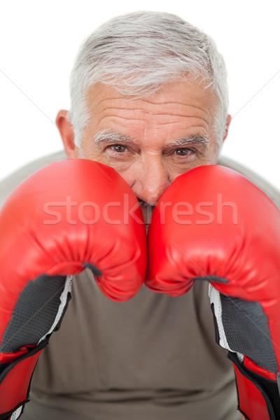 Retrato determinado senior boxeador branco Foto stock © wavebreak_media