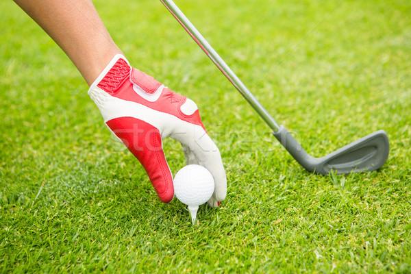 Golfer placing golf ball on tee Stock photo © wavebreak_media