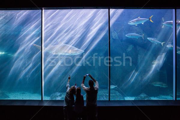 Família feliz olhando peixe tanque aquário homem Foto stock © wavebreak_media