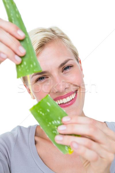 Attractive woman snapping aloe vera leaf  Stock photo © wavebreak_media