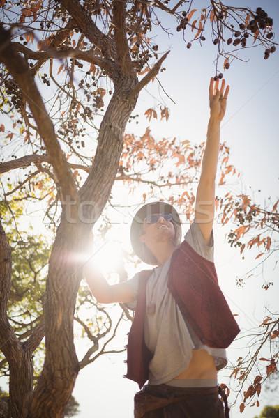 View uomo frutti impiccagione ramo Foto d'archivio © wavebreak_media